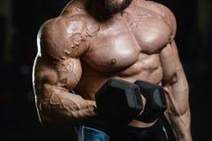 Brutalnego silnego bodybuilder sportowi mężczyzna pompuje up mięśnie z d Obrazy Royalty Free