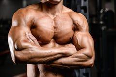 Brutalni caucasian przystojni sprawność fizyczna mężczyzna na diety klatki piersiowej stażowym puma Zdjęcie Royalty Free