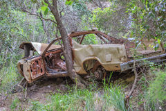Bruten bil i skogen Arkivfoton