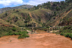 Bruten bro Madagascar Arkivfoto