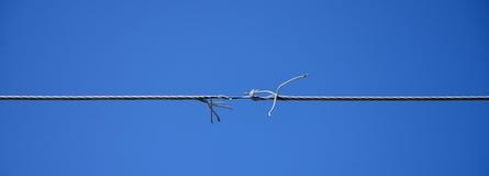 Bruten elektrisk tråd Arkivbilder