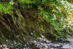Bruten kant av terrängen i villebrådet på Bromberg Royaltyfri Foto
