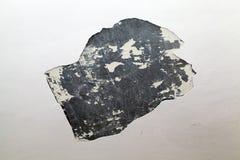 Bruten murbruk, närbild Arkivbild