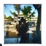 Bruten reflexion Royaltyfri Foto