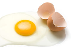 Brutet ägg och ägg Shell Royaltyfria Bilder