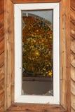 Brutet fönster i en övergiven träbyggnad royaltyfri foto
