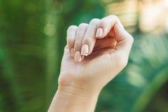 Brutet spika på en hand för kvinna` s med en manikyr på en grön bakgrund arkivbilder