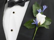 Bräutigam, der einen Anzug mit einem RoseCorsage trägt Lizenzfreies Stockbild
