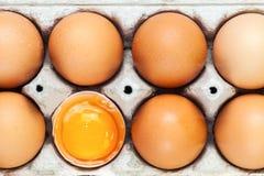 Brutna äggskal med hela ägg Arkivfoton