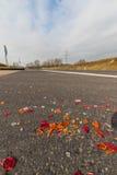 Brutna billyktor av en bil Fotografering för Bildbyråer
