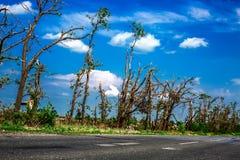 Brutna stupade träd Brutna träd i efterdyningen av en orkan Ukraina Cherkassy region, sommar 2017 Arkivbild