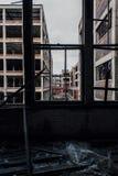 Brutna Windows - övergiven Packard bilfabrik - Detroit, Michigan royaltyfri foto