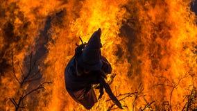 Bruxa ardente Fotografia de Stock Royalty Free