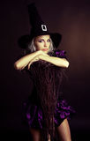 Bruxa com uma vassoura Fotos de Stock