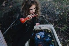 Bruxa do vintage com elixir à disposição Fotografia de Stock