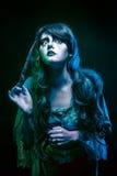 Bruxa e a varinha mágica Imagem de Stock Royalty Free