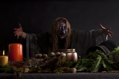 Bruxa em sua cozinha Fotos de Stock Royalty Free