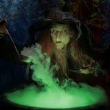 Bruxa idosa nas madeiras Fotografia de Stock