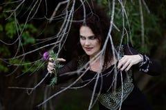 A bruxa má está escondendo atrás dos arbustos Imagens de Stock Royalty Free