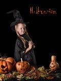 A bruxa pequena cozinha uma poção mágica em Dia das Bruxas Fotografia de Stock Royalty Free