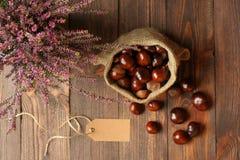 Bruyères dans des pots en céramique, des marrons d'Inde dans le sac de jute et l'étiquette photos libres de droits