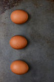 Brwon Eggs on Baking Sheet Stock Photography