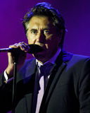 Bryan Ferry Royalty Free Stock Photos