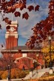 Bryan Hall tower - fall Stock Photos