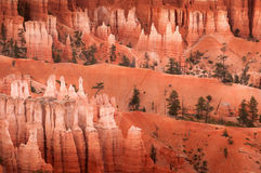 Bryce峡谷不祥之物 图库摄影