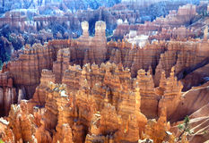 bryce峡谷不祥之物 免版税库存图片