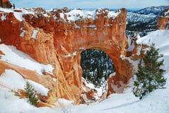 bryce峡谷全景雪 图库摄影