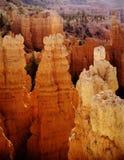 bryce峡谷国家公园日出塔犹他 免版税库存照片