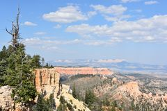 bryce峡谷国家公园犹他 免版税库存图片