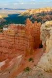 Bryce峡谷国家公园,犹他,美国 免版税库存照片