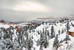 bryce峡谷早晨 库存图片