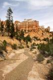bryce峡谷洞生苔线索 免版税库存照片