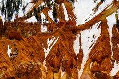 bryce峡谷犹他 库存照片