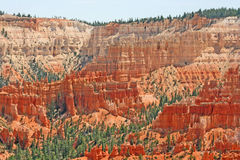 Bryce峡谷,犹他的南部分 免版税图库摄影