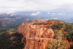Bryce峡谷,犹他,美国 图库摄影