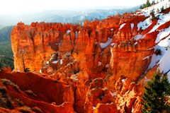 Bryce Beauty. Bryce Canyon at sunrise in spring time Royalty Free Stock Images