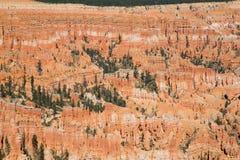 Bryce Canyon Fotografia de Stock