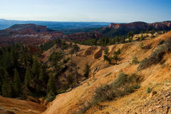 Bryce Canyon. Afternoon light in Bryce Canyon National Park, Utah, USA Stock Photography