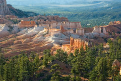 Bryce Canyon. Warm Morning Light in Bryce Canyon National Park, Utah, USA Stock Photos