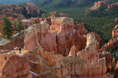 Bryce Canyon. A Photographer in Bryce Canyon National Park, Utah, USA Royalty Free Stock Photography