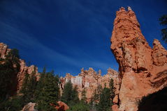 Bryce Canyon. A view from Bryce Canyon,Utah Royalty Free Stock Photography