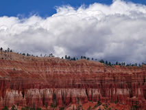 Bryce Canyon. A view up to the rim of Bryce Canyon from the trail below Stock Photography