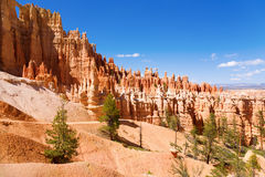 Bryce Canyon. View of Bryce Canyon, Utah showing unique rock formations Stock Photos