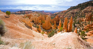 Bryce Canyon. Wide angle panorama of Bryce Canyon, Utah showing unique rock formations Stock Image