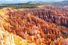 Free Bryce Canyon Royalty Free Stock Image - 19266206
