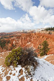 Bryce Canyon. With snow,  National Park, Utah, USA stock photography